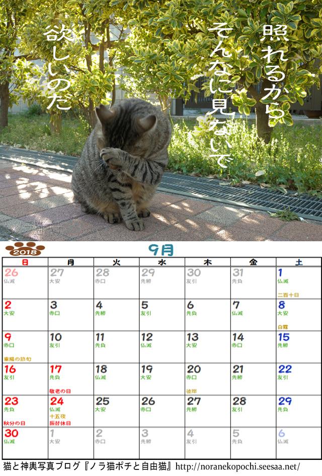 ぼやきカレンダー9月.jpg
