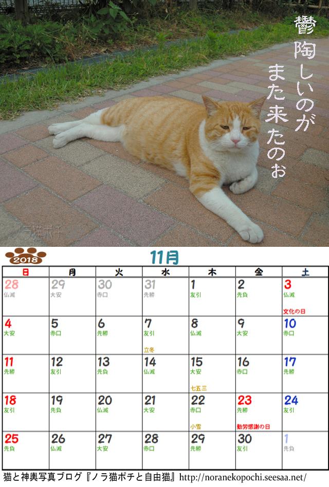 ツンデレボス太郎カレンダー11月.jpg