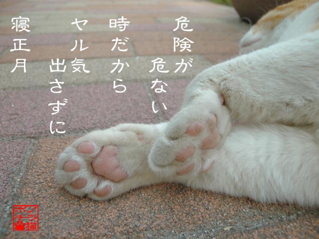 猫の手今年は休業にゃん.jpg